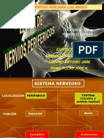 Lesion de Nervios Perifericos