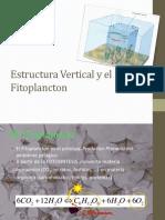 5. Estructura Vertical y Productividad Del Fitoplancton