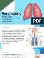 Sistema Respiratorio Intro