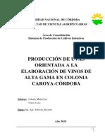 Producción de VINOS.pdf