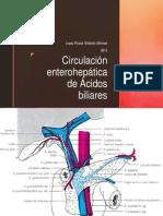 Circulacion Enterohepática de Acidos Biliares