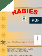 Materi_RABIES_new.ppt
