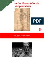 PUNTOS-ESENCIALES.pdf