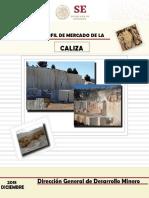 Perfil_Caliza_2018__T_.pdf