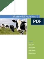 Informe de Problema 2v