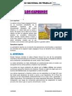 270038188-INFORME-DE-LOS-CAPRINOS-docx.docx