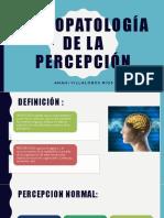 Psicopatología de La Percepción - Anahi