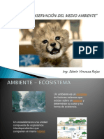 Cuidado y Conservación Del Medio Ambiente