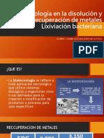 Biotecnología en La Disolución y Recuperación de Metales