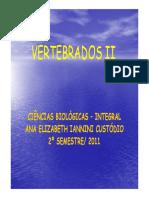 Amniota e Reptilia [Modo de Compatibilidade].pdf