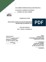industria publ.doc
