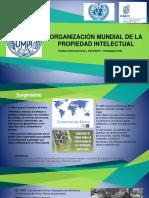 OMPI (1).pptx