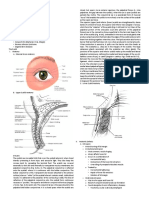 Eyelid and Conjunctiva