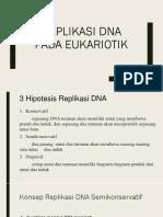 Replikasi Dna Pada Eukariotik