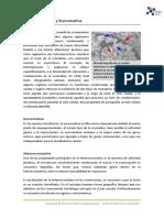 7_heterocromatina_y_eucromatina.pdf