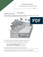 Ficha de Trabalho 1 - Organizaçao Dos Ecossistemas