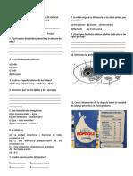 EXAMEN DE CIENCIA TECNOLOGÍA Y AMBIENTE PARA 4 DE SECUNDARIA