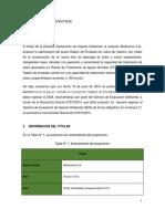 Descripcion_del_proyecto_o_actividad.pdf