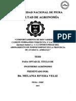 AGR-RIV-VEL-15.pdf
