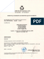 nascimento Emilio Nicolò Biasi.pdf