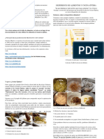Díptico Informe Ecología