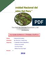 Descripcion de Maderas Ltifoliadas y Coniferas