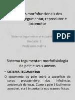 1ª Aula Ciências Morfofuncionais Dos Sistemas Tegumentar, Reprodutor e Locomotor 1ª Aula (1)