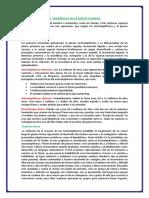 EL  DESARROLLO DE LA ESPECIE HUMANA.docx