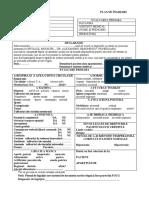 plan-de-ingrijiri-1.docx