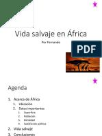 Vida Salvaje en África