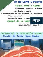 PCH  8.2.11. Introduccion  .ppt