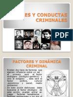 4.PERFILES DELINCUENCIALES - GABRIELA NAVIA (1).ppt