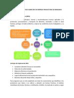 Informe y Diagnóstico Sobre Bpa en Empresa Productora de Manzanas