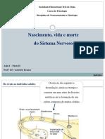 Aula 2 - Parte II - Nascimento, vida e morte do SN.pdf