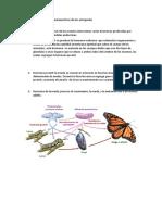 hormonas en los invertebrados.docx