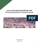 Investig. 2009 Barrios de SAS.pdf