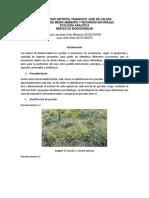 Indices_biodiversidad.docx