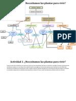 370630937-Actividad-1-Necesitamos-Las-Plantas-Para-Vivir.docx