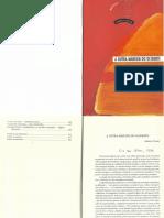 NOVAES - A OUTRA MARGEM DO OCIDENTE.pdf