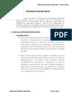 Degradacion de Muestra Alterada Por Sales y Lluvias- Roberts Cuya -Aporte