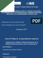 ANA ANDUEZA Presentación Final Del TEG 1