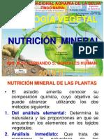 4 Nutric Mine 2018 (2)