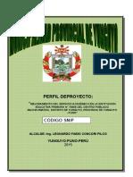 Perfil Iep Machacmarca (4)
