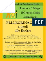 PELLEGRINAGGIO BUDRIE.pdf