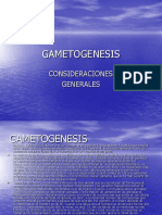 GAMETOGENESIS.ppt