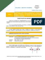 CURSO PILOTO DE DRONES.pdf