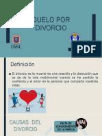 Duelo por el proceso de divorcio presentación UANL
