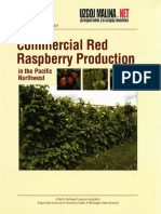 Commercial Red Raspberry Production.pdf