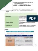 Elaboracion Competencia y Capacidades