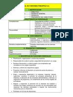 Manual de Funciones Pineapple s.a.